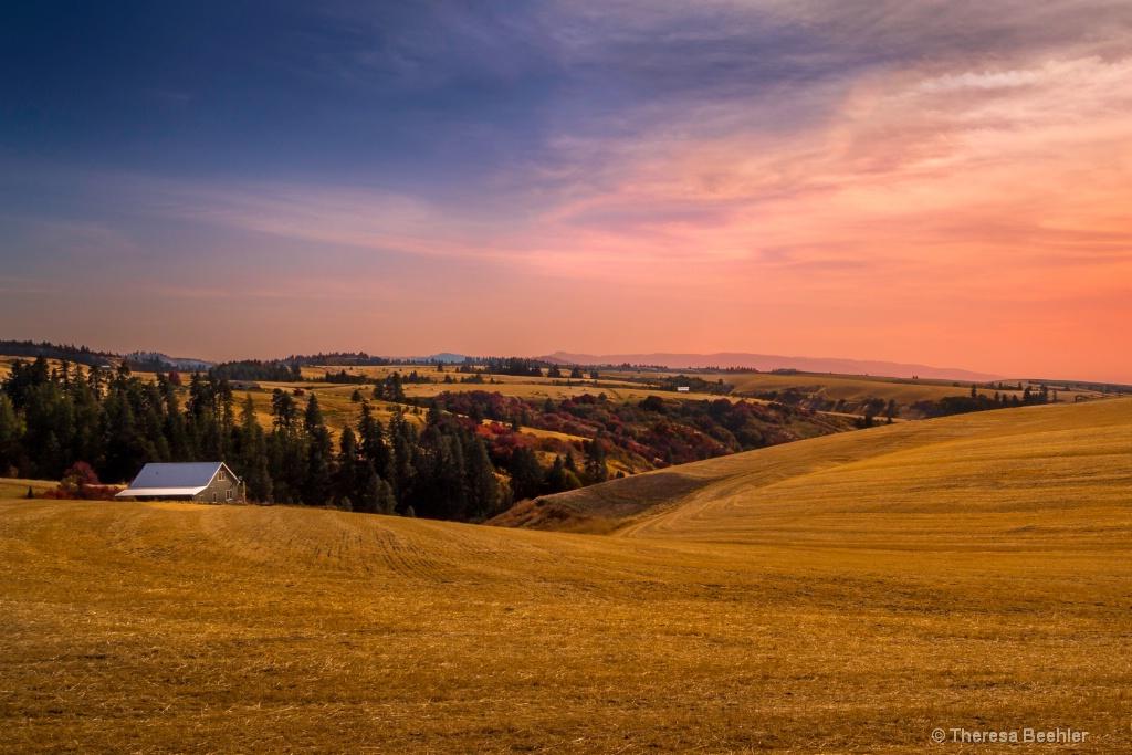 Autumn Gold Crop - ID: 15633012 © Theresa Beehler
