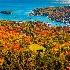 © Jeff Robinson PhotoID # 15639220: Autumn Vista
