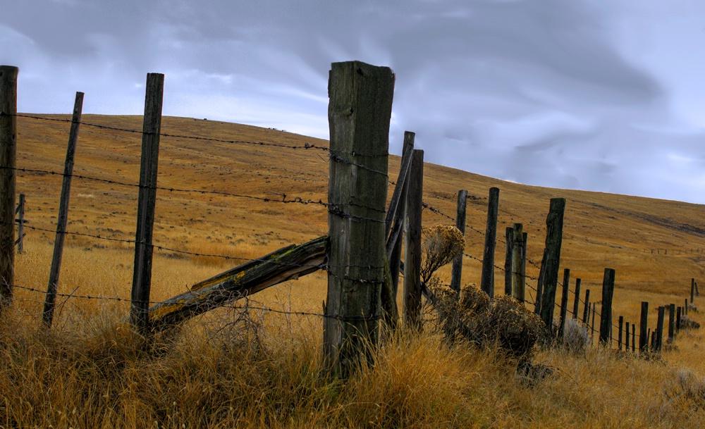 Fence on the Range