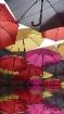 Umbrellas Reflect...