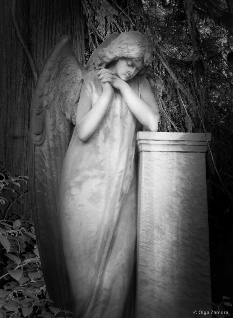 Angel Reveries - ID: 15659787 © Olga Zamora