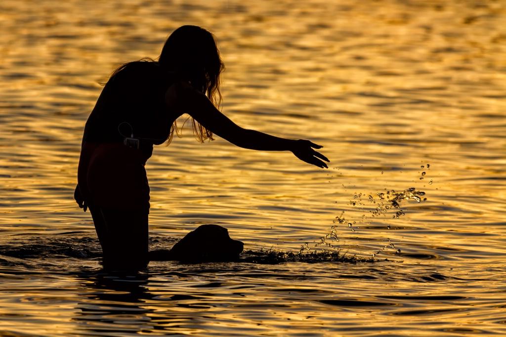 Silhouette Swim  0009 - ID: 15661288 © Karen Celella