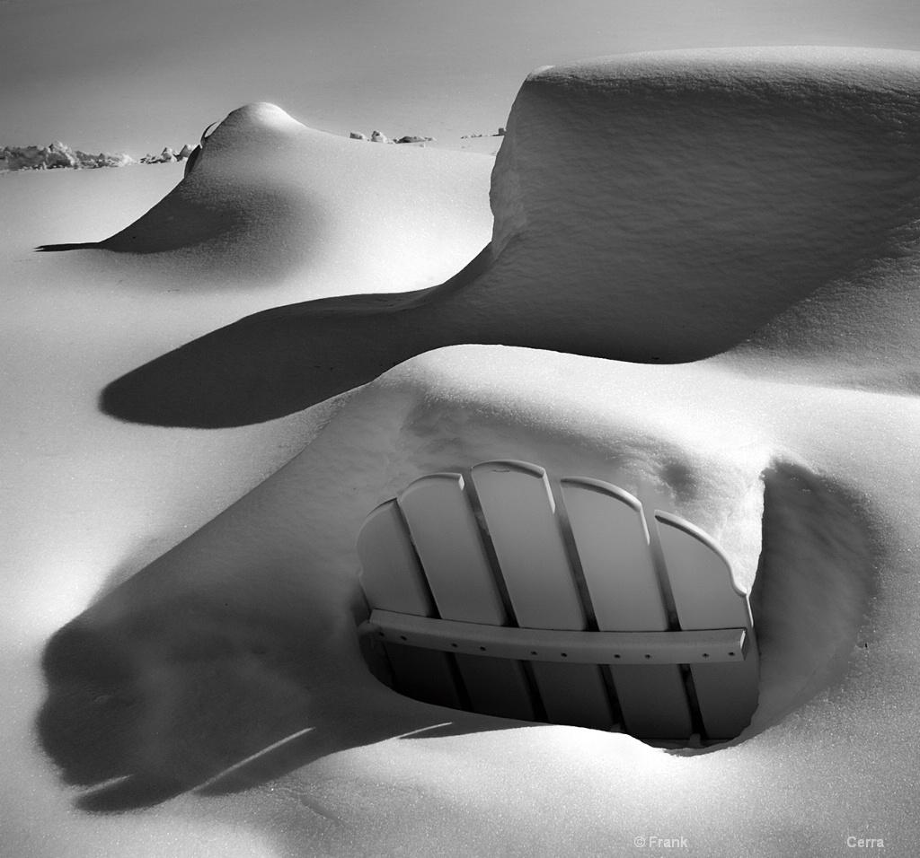 Backyard Snowscape