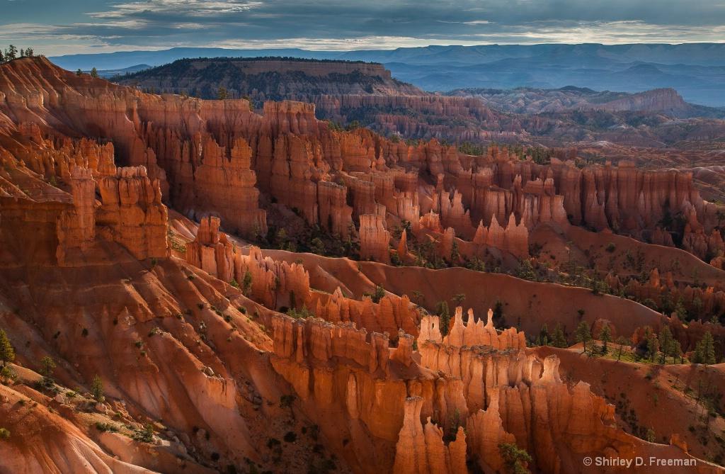 Bryce Canyon - ID: 15671349 © Shirley D. Freeman