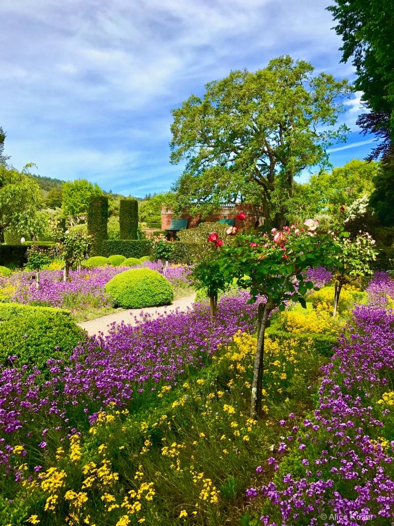 Garden Path - ID: 15673296 © Alice Kozar
