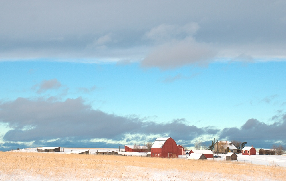 Red Ranch in Winter