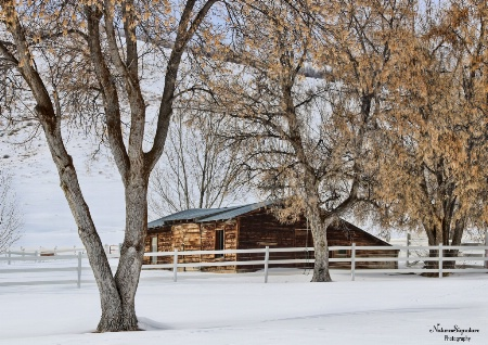~ Winter Cabin ~