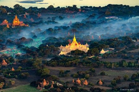 Bagan morning glory