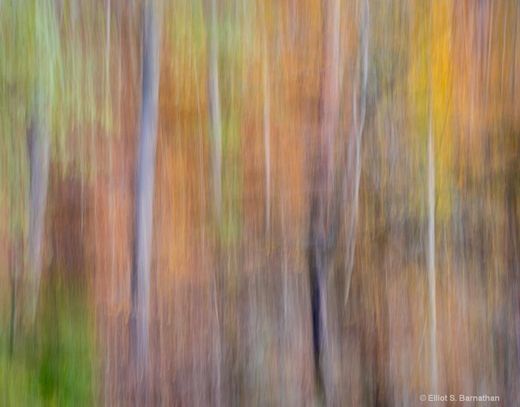 Wissahickon 2 - ID: 15699013 © Elliot S. Barnathan