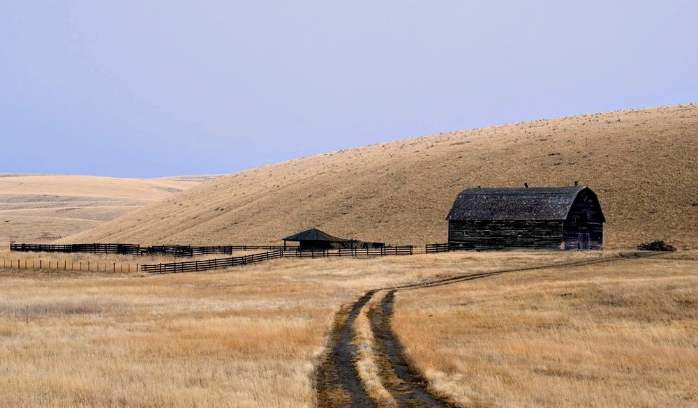 Abandoned Ranch