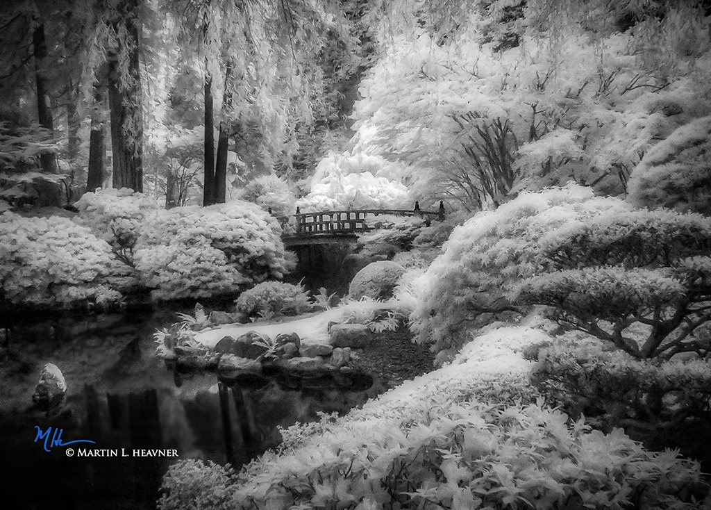Portland (OR) Dream II - ID: 15714950 © Martin L. Heavner