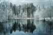 Spring Pond in In...