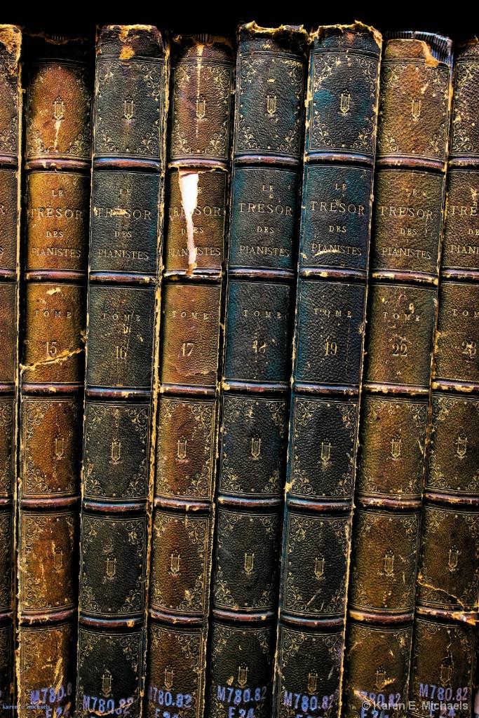 Speaks Volumes - ID: 15724185 © Karen E. Michaels